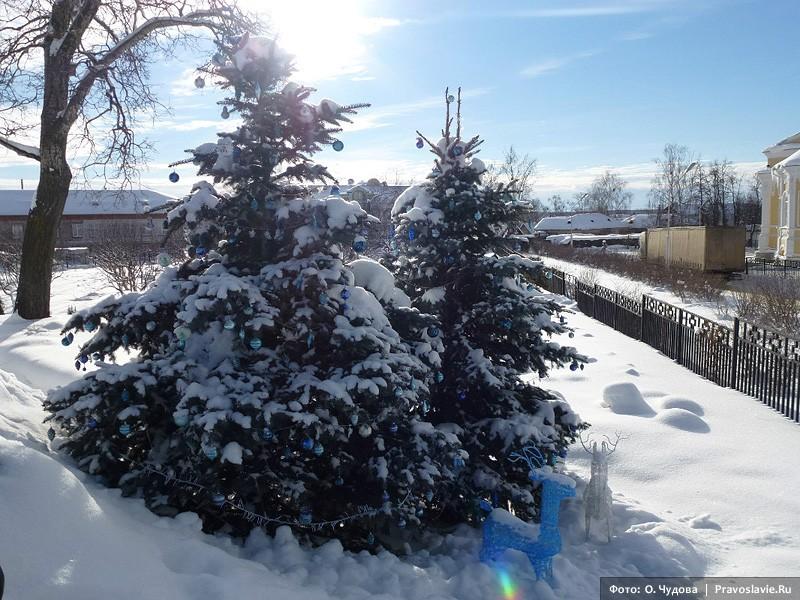 Στολισμένο Χριστουγεννιάτικο δέντρο