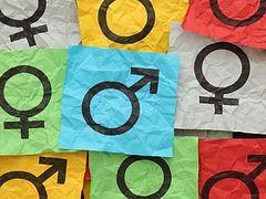 Гендерно-ориентированная Палата №6