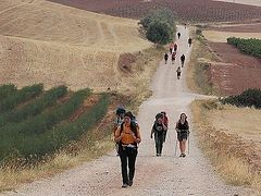215,000 pilgrims walked the Way of St. James this year