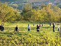 Ђурђевдански обичаји –наслеђе прошлости и показатељи будућности једног народа