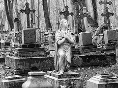 Смоленское кладбище: люди, могилы, чудеса блж. Ксении