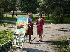 Секта «Свидетели Иеговы» активизировалась в Архангельске