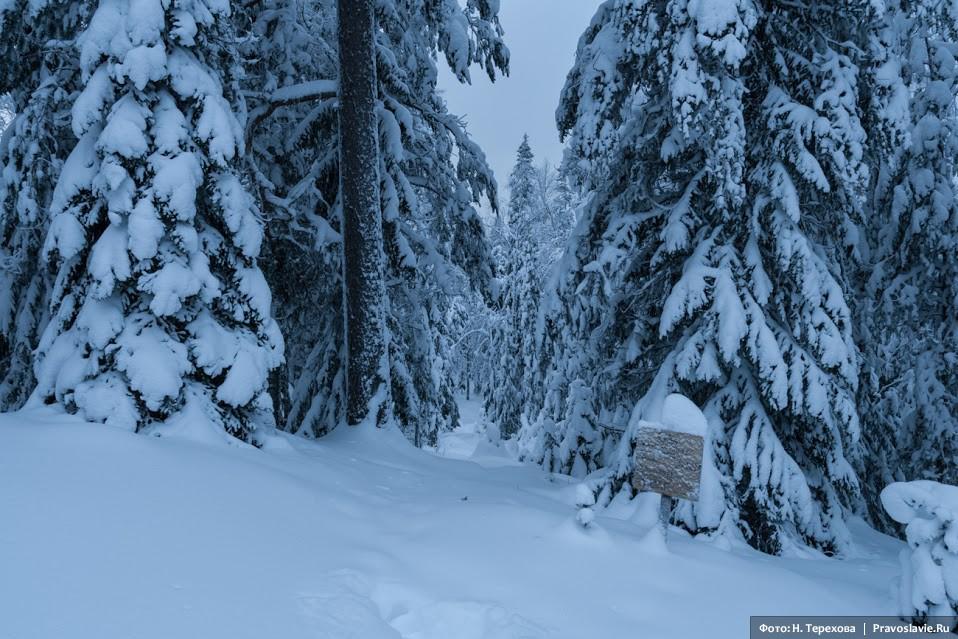 Покрытая снегом лесная тропа ведет к тому месту, где в советское время было казнено огромное число безымянных мучеников на Секирной горе. Сейчас над массовыми захоронениями воздвигнуты кресты и совершаются заупокойные службы.