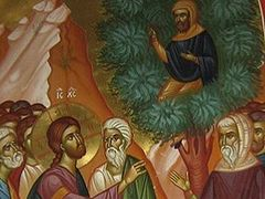 Zacchaeus and the Salvation of Sinners