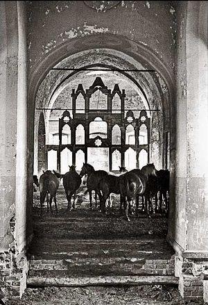 Кони в заброшенном храме, 1960-е гг.