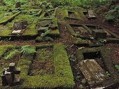 Repeated Vandalism in Historic Sitka Cemetery