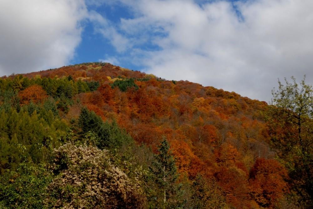 Рыльские горы