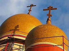 Appeal By the Clergy and Parish Council of the Cathedral of the Mother of God
