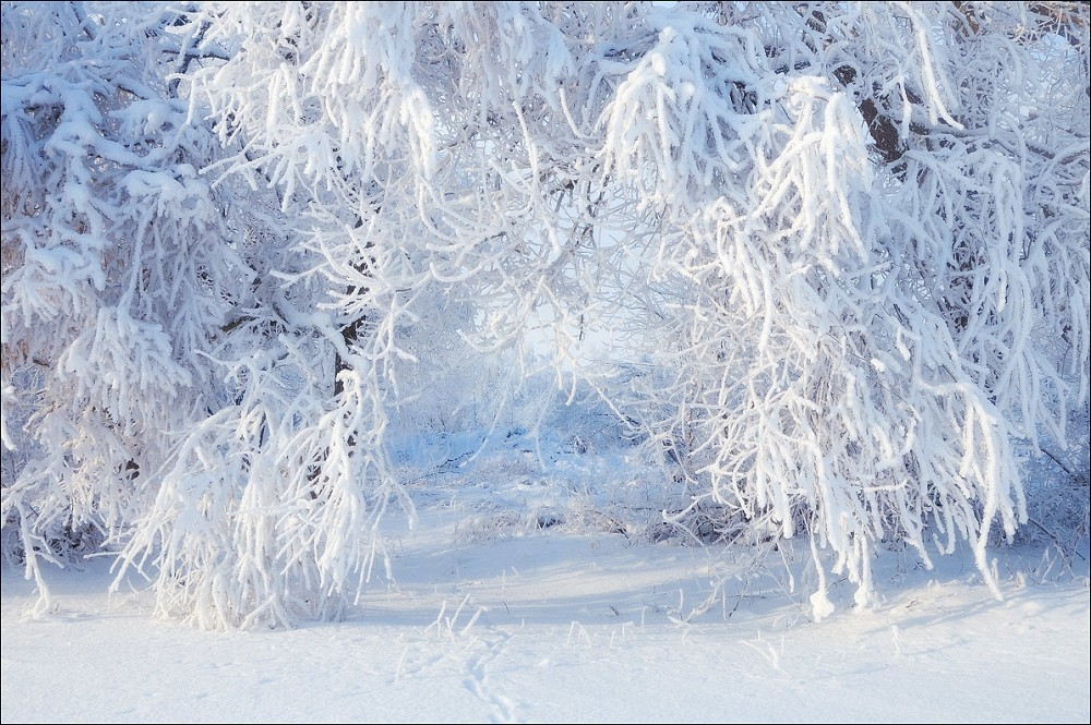 Ажур зимы