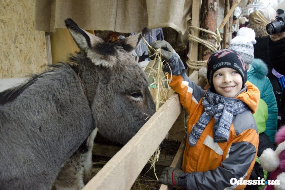 And donkeys. A manger scene in Odessa, on Deribasovskaya Street.