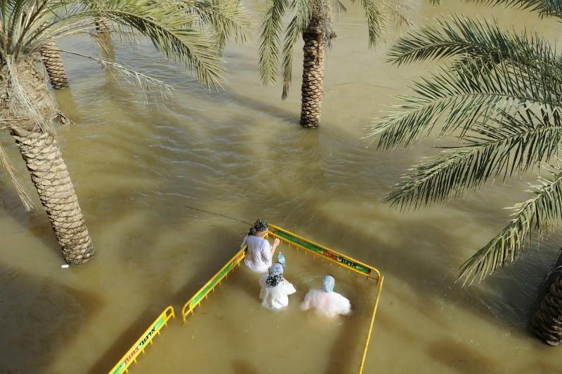 Крещение Господне на реке Иордан, 2014