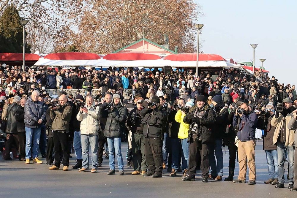 Onlookers and press on the banks of the Danube.