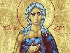 Sermon for the Sunday of St. Mary of Egypt