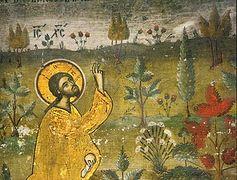 Why I Became a Creationist
