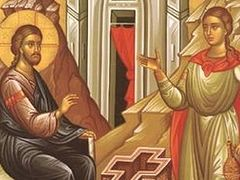 Homily: Faith Without Works Is Dead