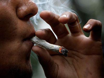 Курить коноплю это грех высокая автоцветущая марихуана