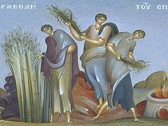 Be Good Soil! The Parable of the Sower