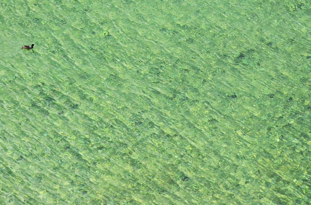 Воды Охридского озера