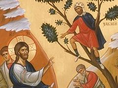 How Zacchaeus Reclaimed Paradise