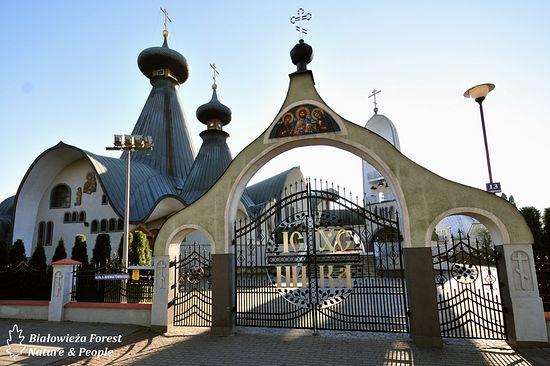 Photo: bialowieza-forest.com