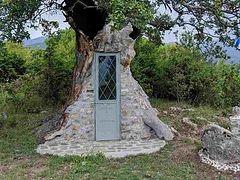 Greek villager builds chapel of St. Paisios inside oak tree