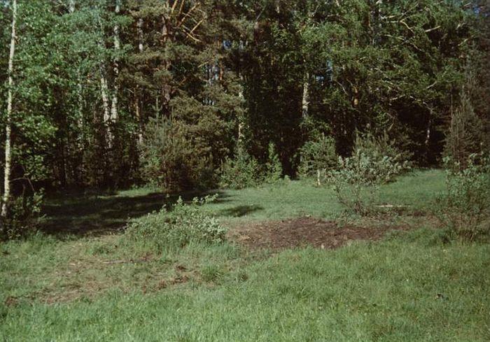 Снимки, сделанные Гелием Рябовым после первого вскрытия захоронения в Поросенковом логу. Как видно на фото, никакого болота, а тем более торфяника на этом месте не было