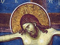 On the Holy Cross and Human Suffering