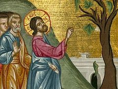 What Will the Lord Find When He Comes: On the Barren Fig Tree