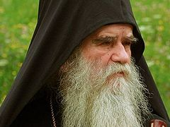 Attack on Syria is madness and shame for NATO—Metropolitan of Montenegro