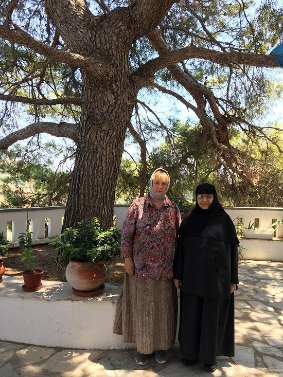 С сестрой Нектарией под той самой горной сосной, где обычно беседовал Святитель с сестрами монастыря