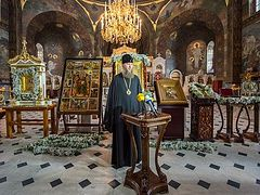 8 miraculous icons and relics brought to Kiev for celebration of Baptism of Rus' (+ PHOTOS)