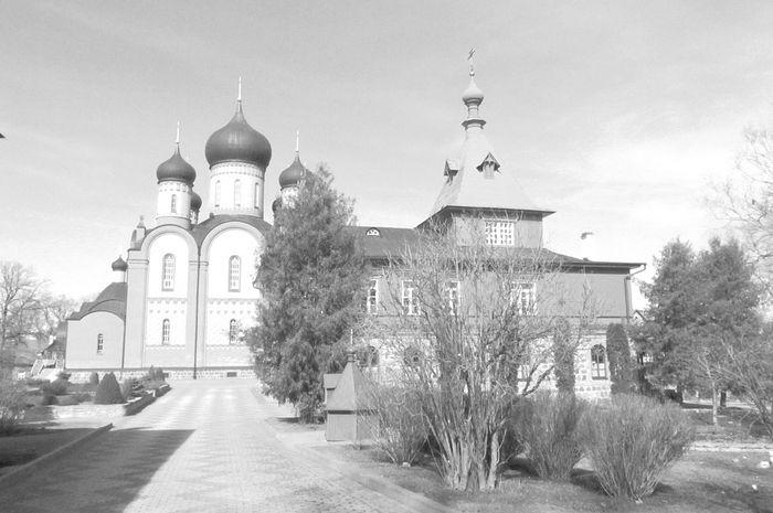 Пюхтицкий монастырь. Фото Петра Давыдова.