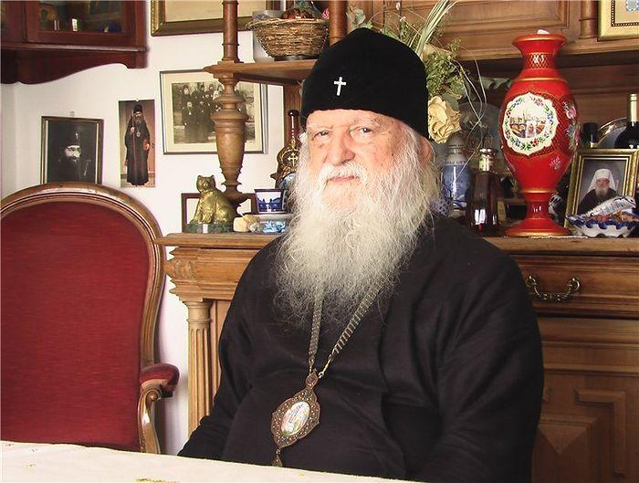 Архиепископ Медонский Михаил (Донсков)