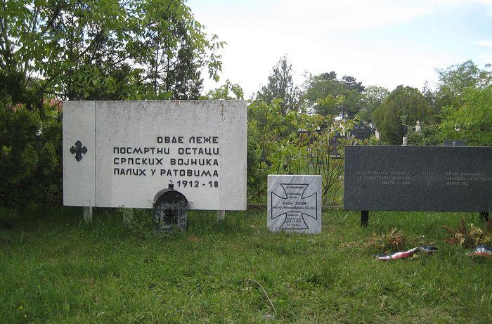 Учесници у Великом рату са Косова и Метохије