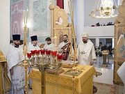Новоназначенный глава Патриаршего экзархата в Западной Европе совершил в Париже череду рождественских богослужений