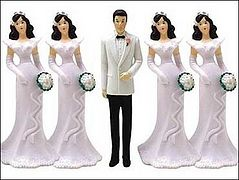 Polygamy is Harmful to Society, Scholar Finds