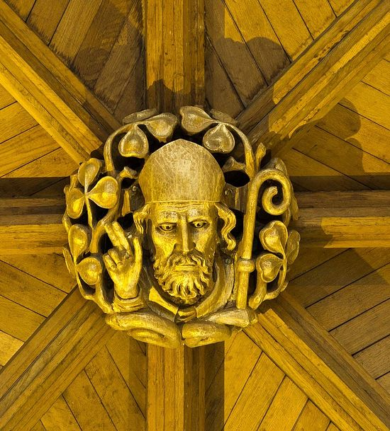 The ceiling boss of St. Patrick inside Anglican Cathedral in Armagh (kindly provided by John Stafford)