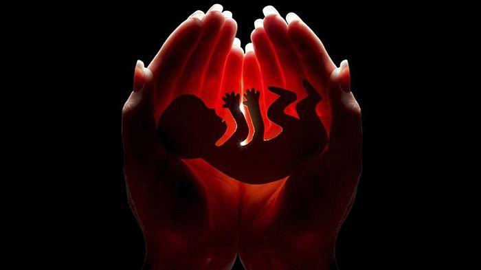 В США в штате Огайо запретили аборты с момента начала сердцебиения у плода