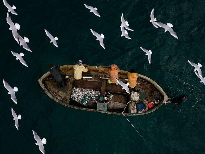 Морская рыбалка. Автор: Алексей Мальгавко