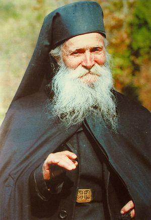 Elder Thaddeus of Vitovnica
