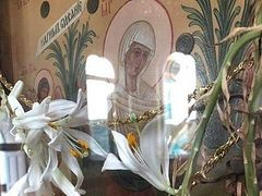 Dry lilies miraculously bloom in time for Pentecost at Krasnogorsk Monastery (+ VIDEO)