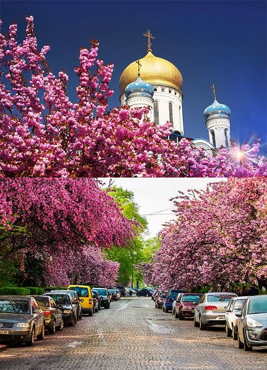 Photo: www.alltravels.com.ua