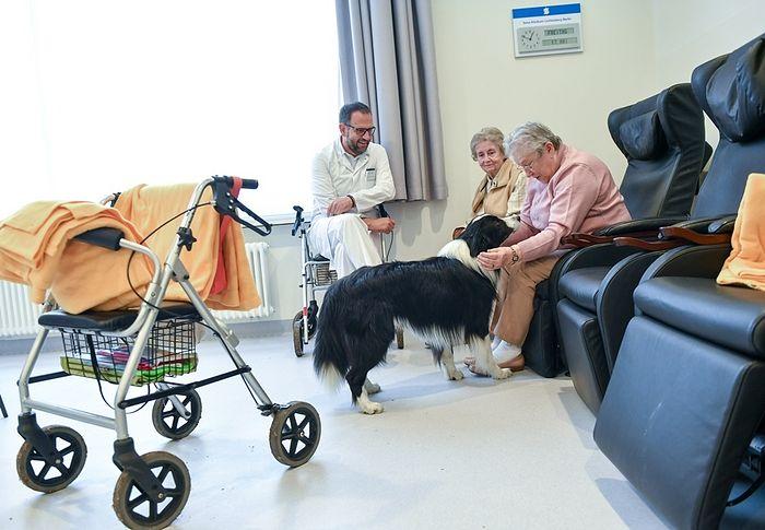 В случаях, когда активная терапевтическая помощь оказывается несостоятельной, её должна сменить помощь паллиативная. Фото: www.globallookpress.com
