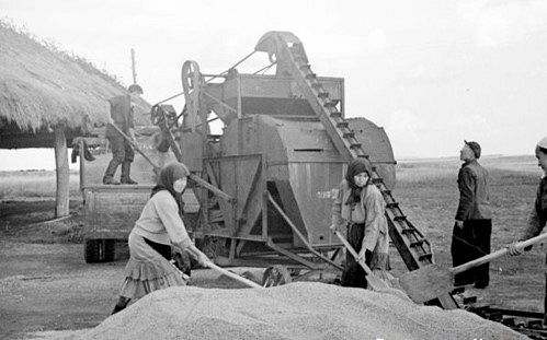 At a collective farm's threshing floor
