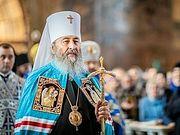 Патриарх Кирилл поздравил Блаженнейшего митрополита Киевского и всея Украины Онуфрия с пятилетием интронизации