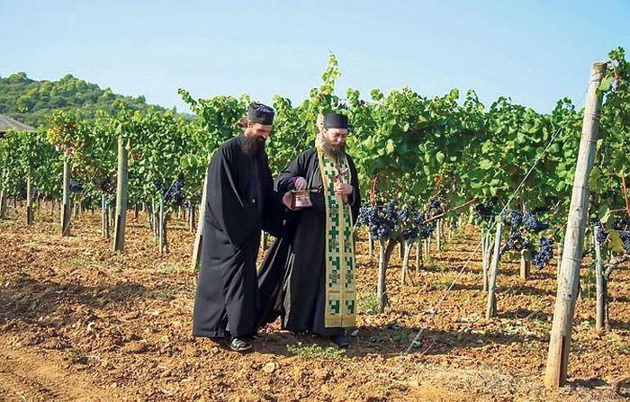 Игуман Методије са монахом у винограду