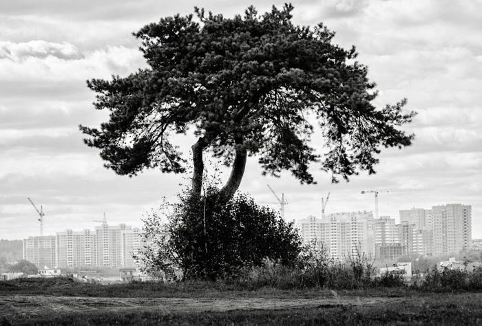 Фото свящ. Игоря Палкина