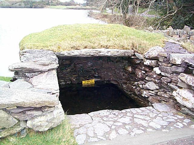 Источник свт. Финбарра в Гуган-Барре, Корк (фото любезно предоставлено Finbarr Lucey)