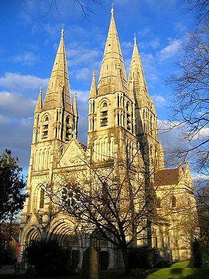 Кафедральный собор свт. Финбарра в Корке