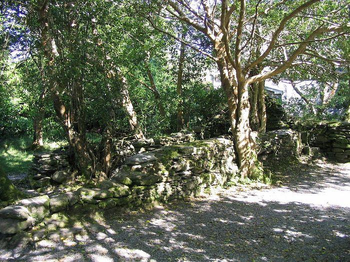 Руины монастыря на о. Гуган-Барра, Корк (фото любезно предоставлено Finbarr Lucey)
